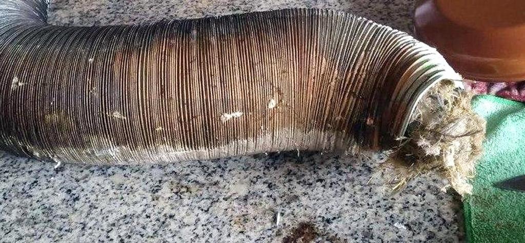 Cómo evitar la intoxicación por monóxido de carbono por mal funcionamiento de calentadores de agua